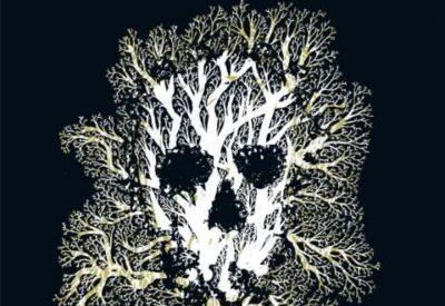 birgit weyhe, birnbaum, fontane, die unheimlichen